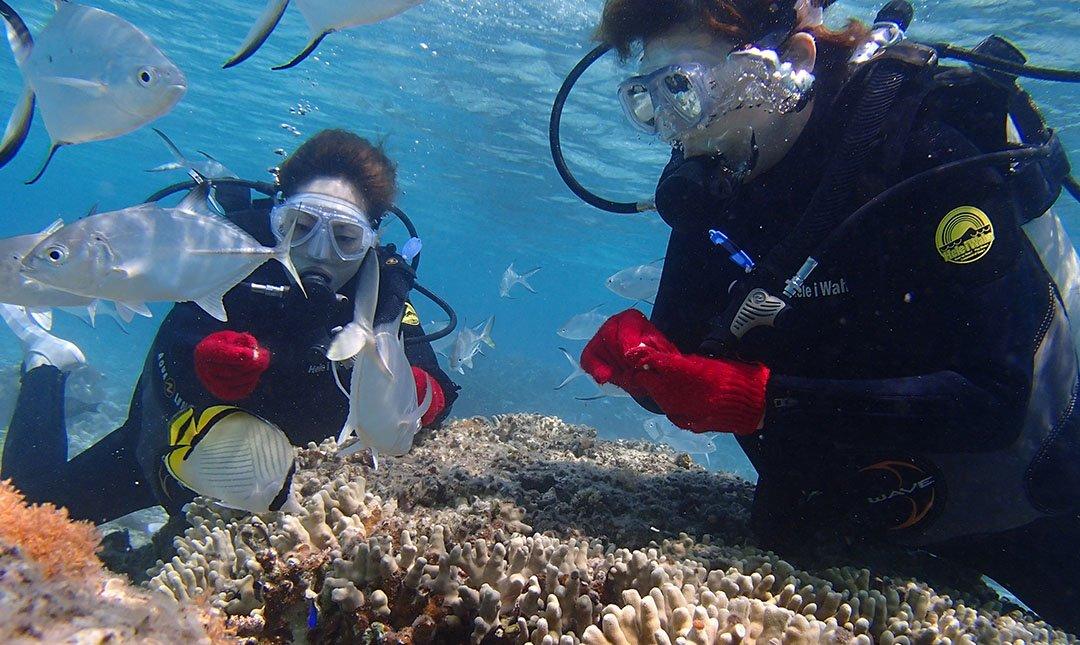 Ocean Style-水納島 | 輕鬆潛水體驗