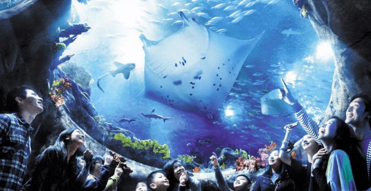 香港海洋公園門票 Hong Kong Ocean Park Ticket-外籍遊客 | 香港海洋公園1日電子門票