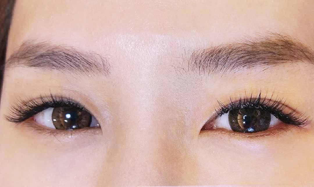 Daimie Beauty Salon-美睫 3D 濃密型 200~250 根